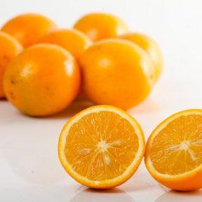 20 partidos teriam lançado 300 candidatas 'laranjas' à Câmara, diz estudo